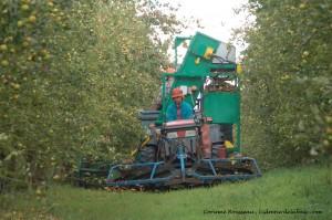 La machine à récolter les pommes
