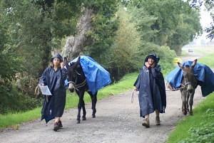 Cape de pluie et bâche sur les ânes