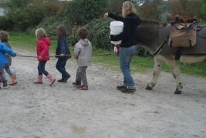 Tenir un âne en colabaration